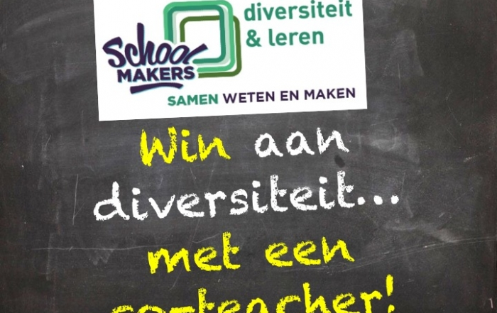 Win aan diversiteit… met een co-teacher!