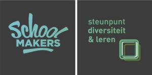 steunpunt diversiteit en leren